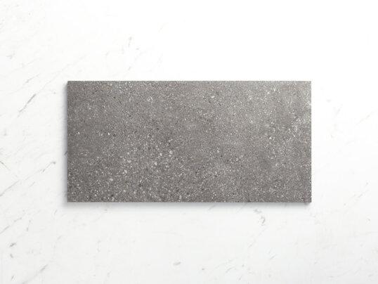 Stone Arena 600X300 Matt Grey Sample