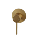Pentro Round Shower Mixer Tap with 65nn Cover Plate Brushed Yellow Gold