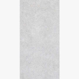 Stone Arena 1200×600 Matt Light Grey_top